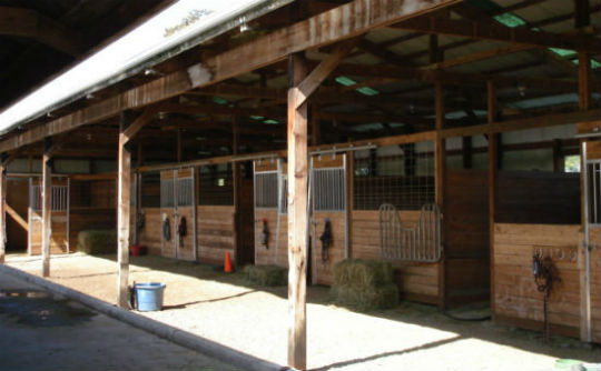 Triple C Horses Boarding Training Lessons Enumclaw